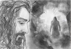 Thorin Oakenshield. In the light. by selva-s