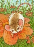 ATC - Lady Rat by Adelaida