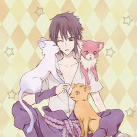 cats and sasuke by iruko1120