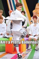 Kai_Pretty Ballerina_MACRO by dancingdots