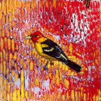 """western tanager"" by micahsherrill"