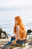 Nami Time Skip: Behind, One Piece Cosplay by firecloak