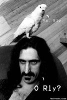 Zappa O'Rly by TheSylverLining