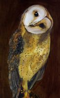 The Barn Owl by lost-nomad07