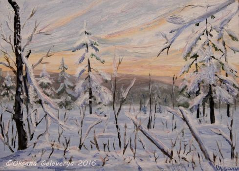 Sunset In The Black Forest Black Forest- oil by Oksana007