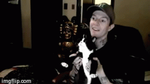 Meowingtons attacks Deadmau5 (GIF) by AnotherDaftPunkFan