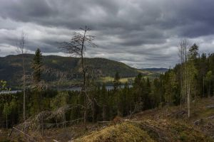 my working place in north sweden by LoveYourPath