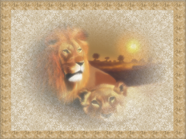 Lions in the Mist by Sunnemo1