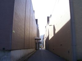 Alley Made of Paper by Twardz