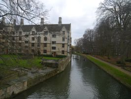 Court by the Cam by Party9999999