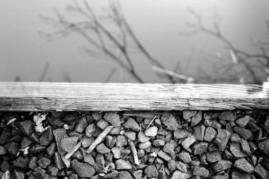 railroad stones branches by guost