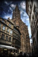Cathedrale de Strasbourg by Vint26