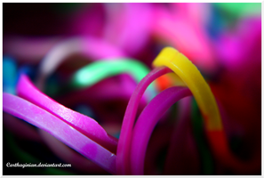 Macro Rubber Bands by Carthaginian