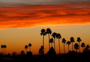 Phoenix Sunset by PaulMcKinnon