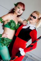 Poison Ivy and Harley Quinn 3 by Insane-Pencil