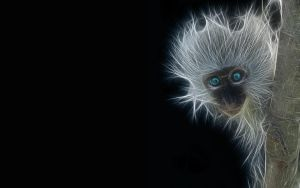 Monkey Fractal blue eyes by christara
