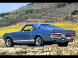 1967 Shelby GT 500 by puddlz