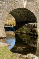 Dartmoor Bridge Arch by parallel-pam