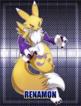 Renamon by nancher