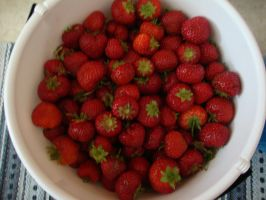 Swedish strawberries by Axcess4