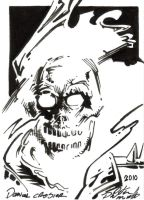 Ghost Rider by PeterPalmiotti