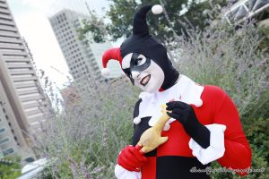 Harley Quinn - Looney Tunes by Nyxiie