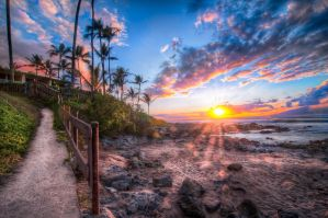 Hawaii, going home or to the beach? by alierturk