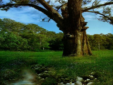 Tree Background by GoblinStock