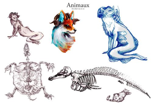 Animaux by Ny-Noxxia