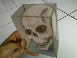 3d skull in the box by vioem