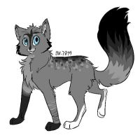 Kitteh by Wild-Animal-Reserve