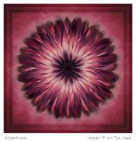 Chrysanthemum by aartika-fractal-art