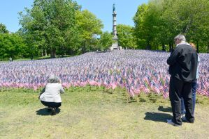 Memorial Day, Sea Of Flags 7 by Miss-Tbones