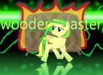 wooden toaster by wafael