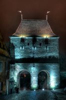 Taylor's Tower at night by mariustipa