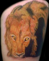 lion tattoo by kamuyart