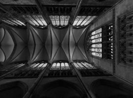Dome - Cologne by UdoChristmann