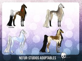 EQUINE POINTS ADOPTABLES by NEFUR-STUDIOS