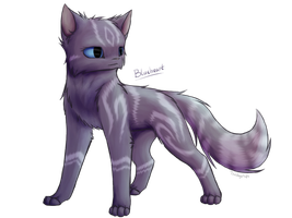 : Blueheart : by TheDogzLife