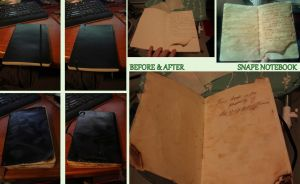 Snape Notebook by WTF-RedVira
