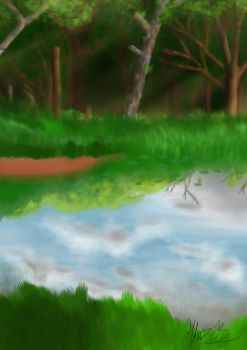 The Pond by mbrack6