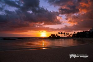 Ko Olina Resort, Oahu Hawaii by Milton-Andrews