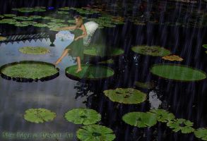 Leaping Lily Pads by missedyn