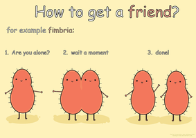 How to get a friend by mikaiya-chan