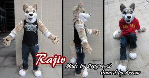 Fursuit--Rajiv by dragon-x2