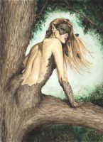 Dryad by jflasher