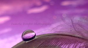 .::Purple::. by zaranix