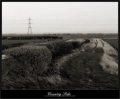 CountrySide. by disturbed