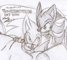 Sonadow Thanksgiving by SonicRemix