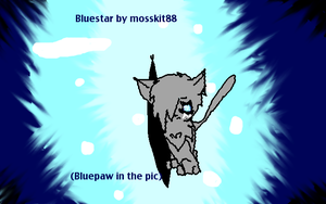 Bluestar (Bluepaw in the pic) by Flare88